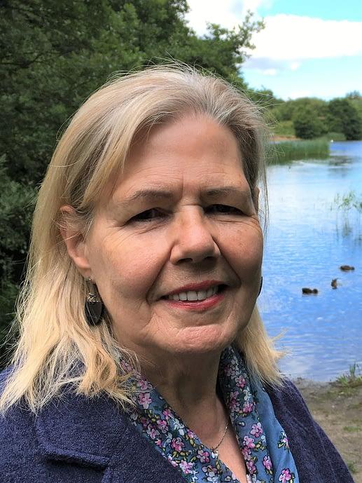 Lyn Pettigrew - Scottish Artist
